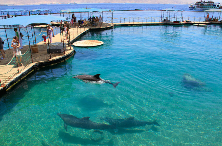 Eilat y el Mar Muerto