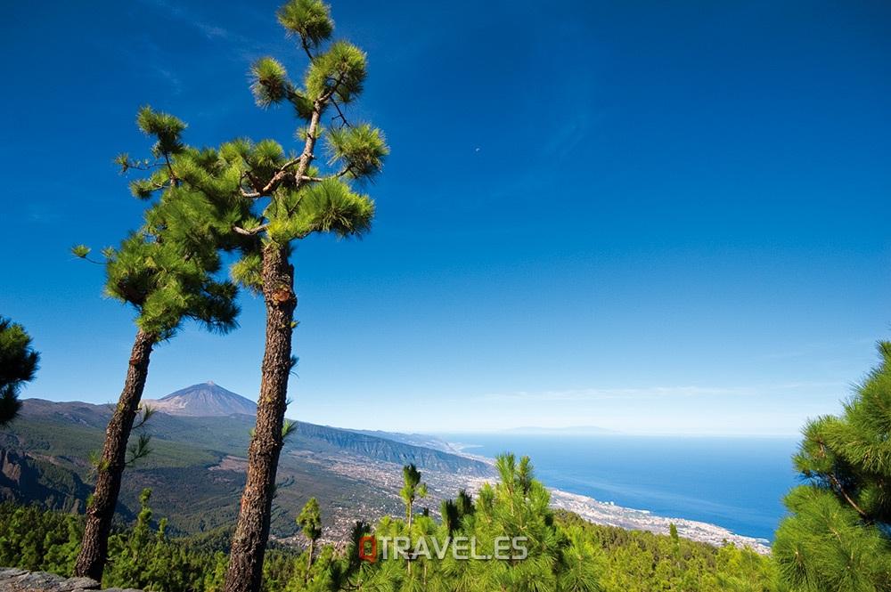 Qué ver y qué cosas hacer Tenerife El Teide desde el mirador de Chipeque, tenerife