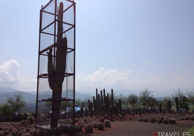 Morelos inaugura el jardín más grande del mundo