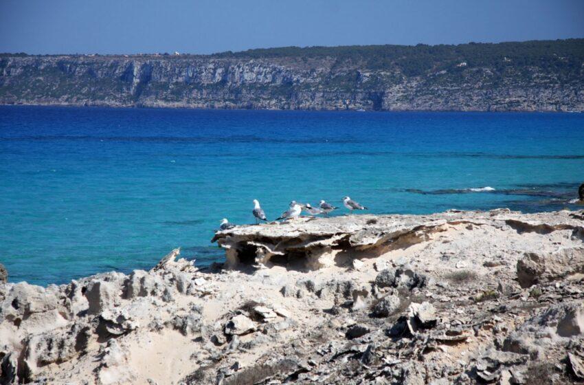 Formentera, destino ideal este otoño