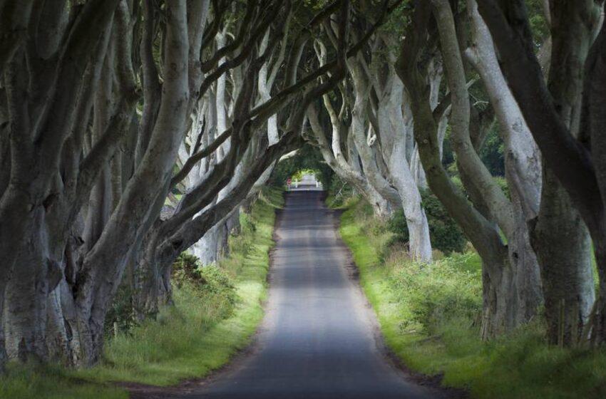 Irlanda Del Norte nos propone descubrir los escenarios de Juego de Tronos