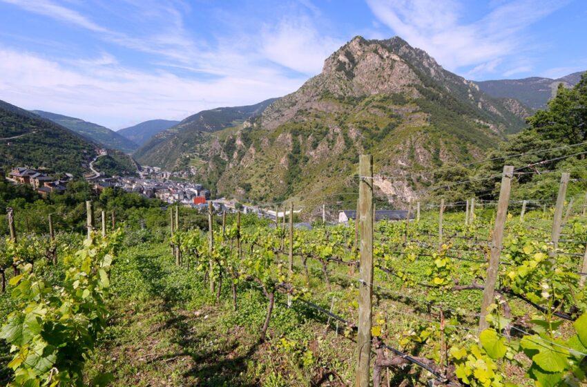 La Andorra más natural con Hoteles Plaza
