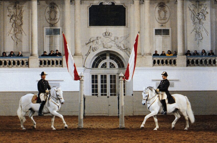 La Escuela Española de Equitación de Viena proclamada Patrimonio Cultural de la Humanidad por la UNESCO