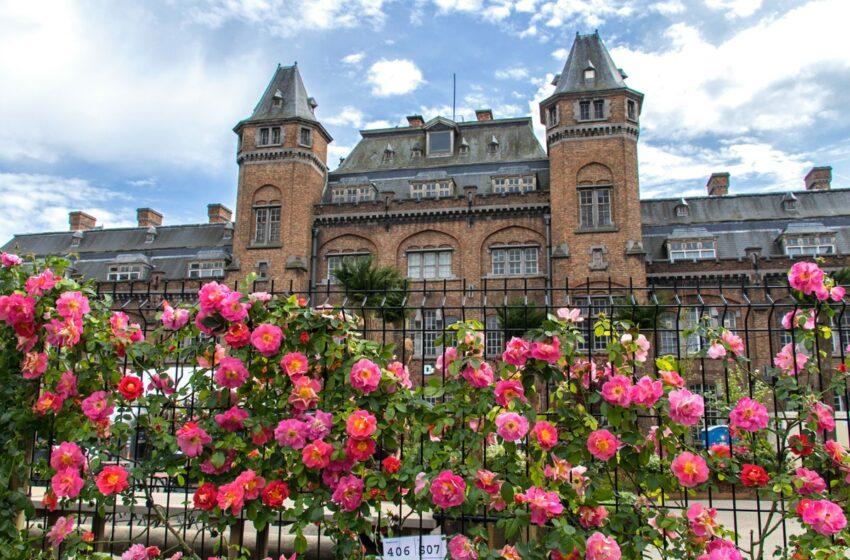 Floralias de Gante, el festival botánico más grande del mundo