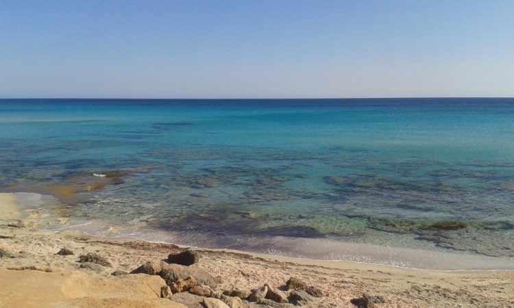Playa-Mitjorn