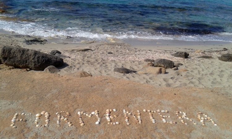 Playa-Ses-Platgetes