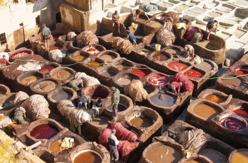 Que en ver Fez, la mayor medina del mundo