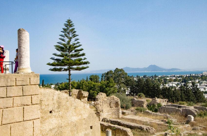Túnez arqueológico, Colina de Byrsa y Termas de Antonino