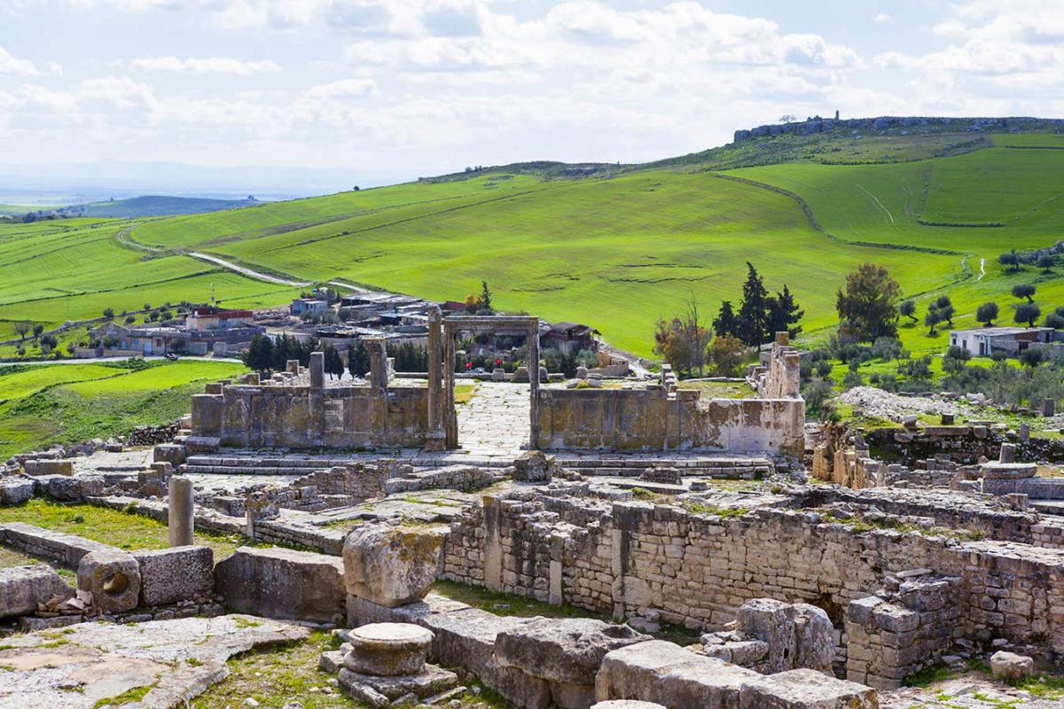 Vista de la Domus
