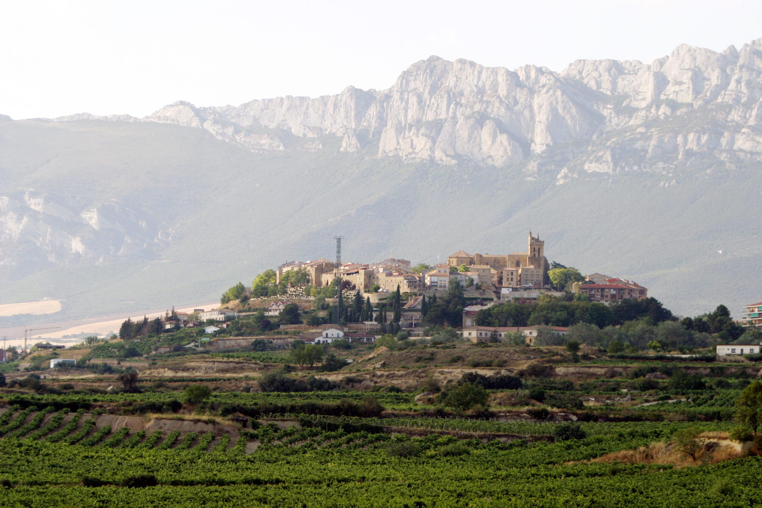 La Ruta del Vino de Rioja Alavesa un enclave único para descubrir