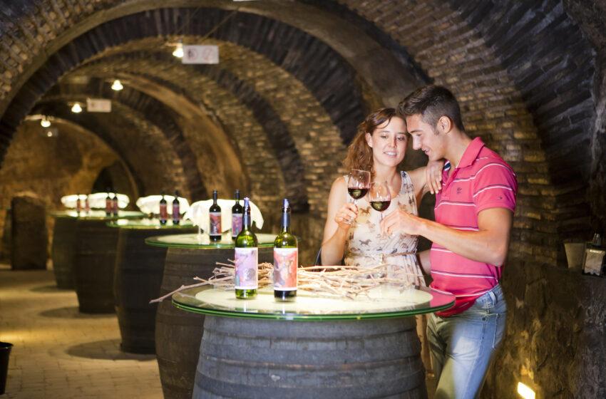 La Ruta del Vino de Rioja Alavesa tiene planes para todos