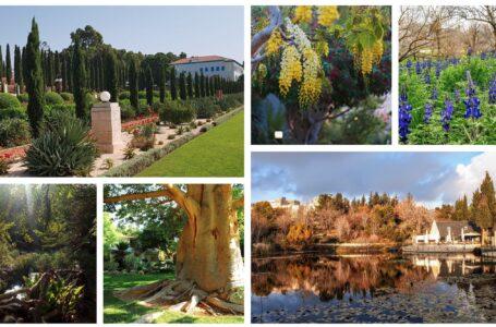 Los 5 jardines más bonitos de Israel