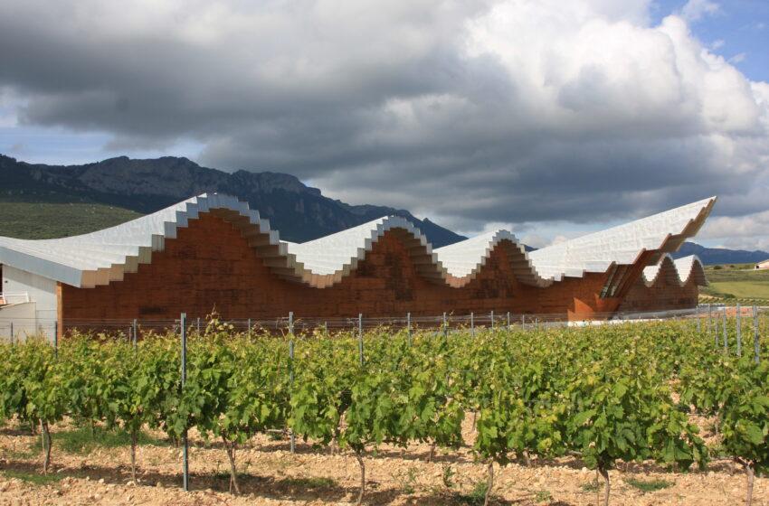 Ruta del Vino de Rioja Alavesa