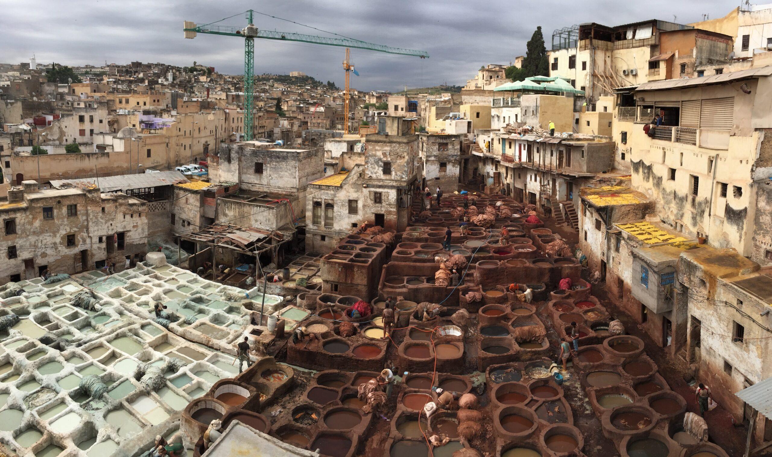 La medina de Fez y mucho más